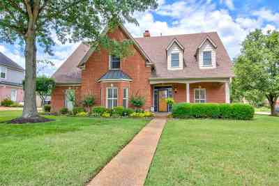 Collierville Single Family Home Contingent: 1251 Elm Springs