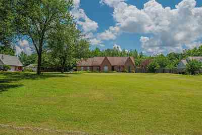 Piperton Single Family Home For Sale: 940 Hwy 196