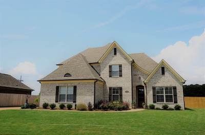 Southaven Single Family Home For Sale: 2224 Redbud
