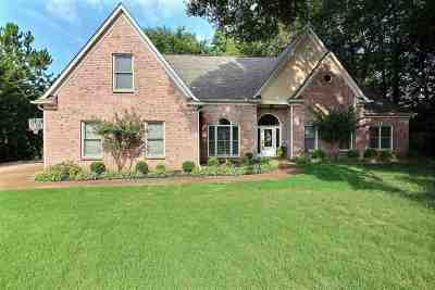 Collierville Single Family Home For Sale: 590 Johnash