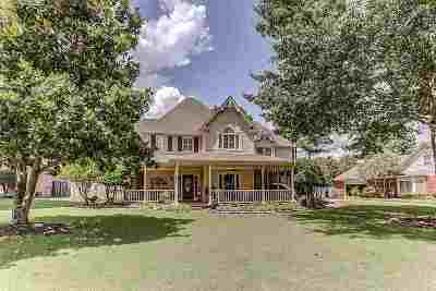 Collierville Single Family Home For Sale: 972 Handforth