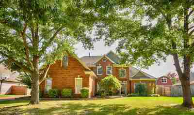 Collierville Single Family Home For Sale: 447 Bowling Brook