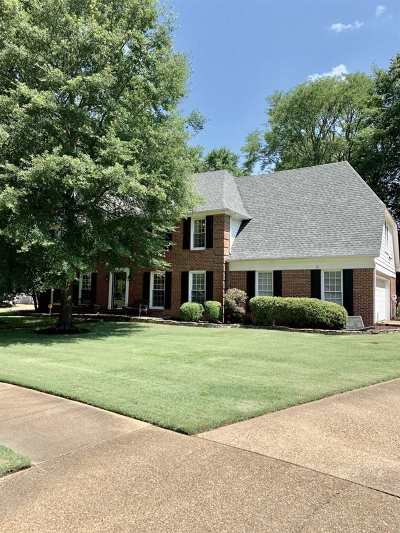 Collierville Single Family Home For Sale: 800 W Powell