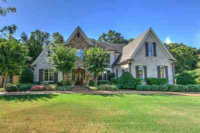 Germantown Single Family Home For Sale: 9021 Grove Forest