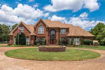 Collierville Single Family Home For Sale: 4732 Mallard Lake