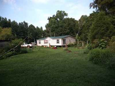 Adamsville Single Family Home For Sale: 1085 Swiney