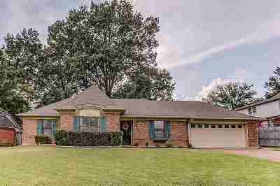 Memphis Single Family Home For Sale: 71 Shelley Renee