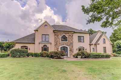 Collierville Single Family Home Contingent: 2446 Logwood Briar