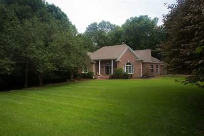 Bartlett Single Family Home For Sale: 9335 Jayne Lewis