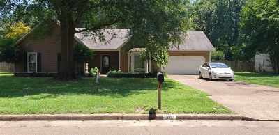 Collierville Single Family Home For Sale: 414 Dove Valley