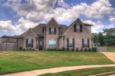 Bartlett Single Family Home For Sale: 8618 Silverwood