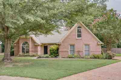 Collierville Single Family Home Contingent: 393 Castle Creek
