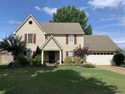 Collierville Single Family Home For Sale: 255 Poplar Bluff