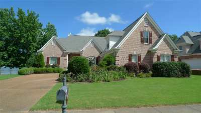Memphis Single Family Home For Sale: 8804 River Hollow
