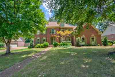 Collierville Single Family Home For Sale: 698 Evans View