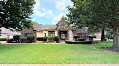 Germantown Single Family Home For Sale: 3086 Windstone