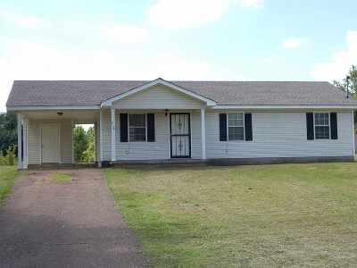 Ripley Single Family Home For Sale: 278 Volz