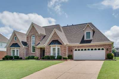 Collierville Single Family Home For Sale: 1320 Pinnacle Point