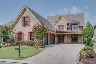 Collierville Single Family Home Contingent: 525 Ogilie