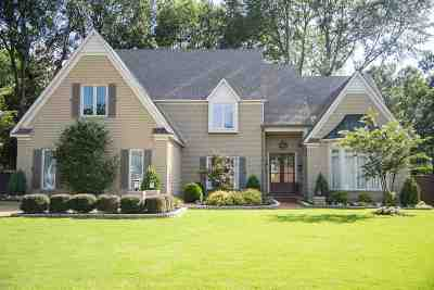 Germantown Single Family Home For Sale: 8671 Lakespur