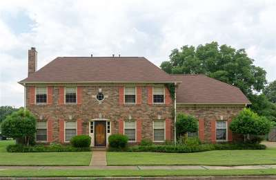 Memphis Single Family Home For Sale: 3973 Fun Valley