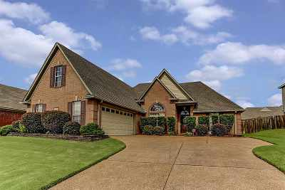 Bartlett Single Family Home For Sale: 5066 Will Fall