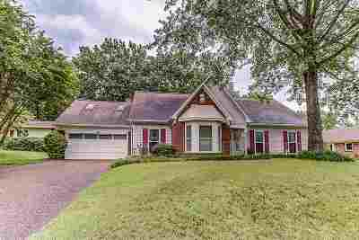 Memphis Single Family Home For Sale: 222 Mysen