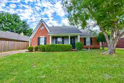 Memphis Single Family Home For Sale: 7534 Spinola