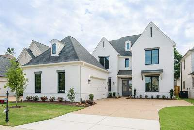 Collierville Single Family Home For Sale: 208 Chadwick Woods
