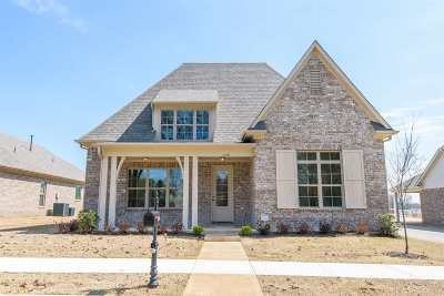 Collierville Single Family Home Contingent: 451 Augusta Pines