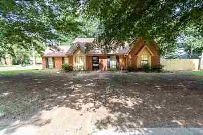 Memphis Single Family Home For Sale: 2455 Pate