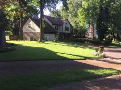 Germantown Single Family Home For Sale: 2128 Shallow Ford