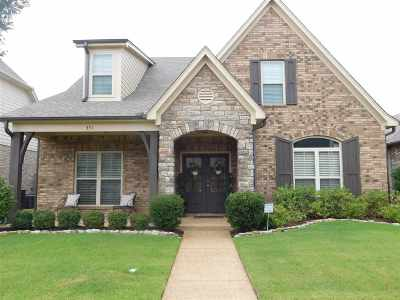 Collierville Single Family Home For Sale: 351 Dogwood Valley