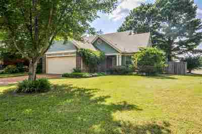 Memphis Single Family Home For Sale: 8146 Walnut Valley