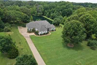 Collierville Single Family Home For Sale: 959 Snowden Farm