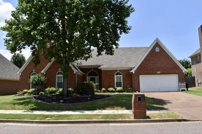 Collierville Single Family Home Contingent: 1231 Sugar