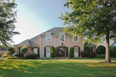 Germantown Single Family Home For Sale: 9442 Groveview