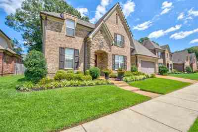Collierville Single Family Home For Sale: 1312 Raindrop