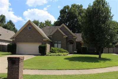 Bartlett Single Family Home For Sale: 7819 Jills Creek