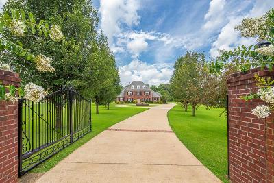 Collierville Single Family Home For Sale: 9446 Forest Wind