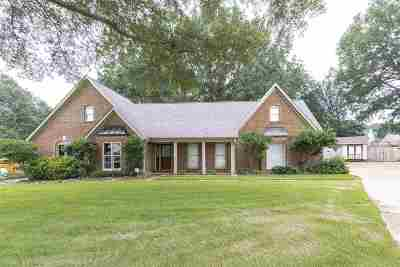 Collierville Single Family Home Contingent: 1048 Petersburg