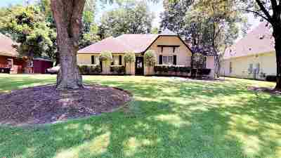 Collierville Single Family Home For Sale: 596 Royal Pecan