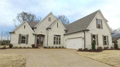 Lakeland Single Family Home For Sale: 10520 Lawrenceburg