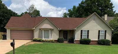 Collierville Single Family Home For Sale: 392 E Valleywood