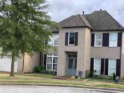 Memphis Single Family Home Contingent: 839 Blue Diamond