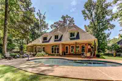 Collierville Single Family Home For Sale: 3454 Manor Grove