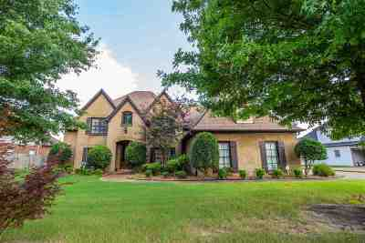 Collierville Single Family Home For Sale: 483 Itawamba