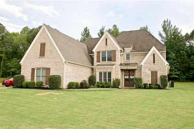 Memphis Single Family Home For Sale: 654 Rocky Brook