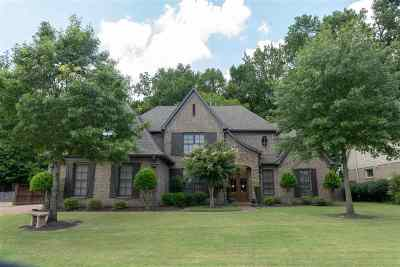 Collierville Single Family Home For Sale: 970 Elm Grove