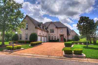 Southaven Single Family Home For Sale: 8915 Sweet Flag